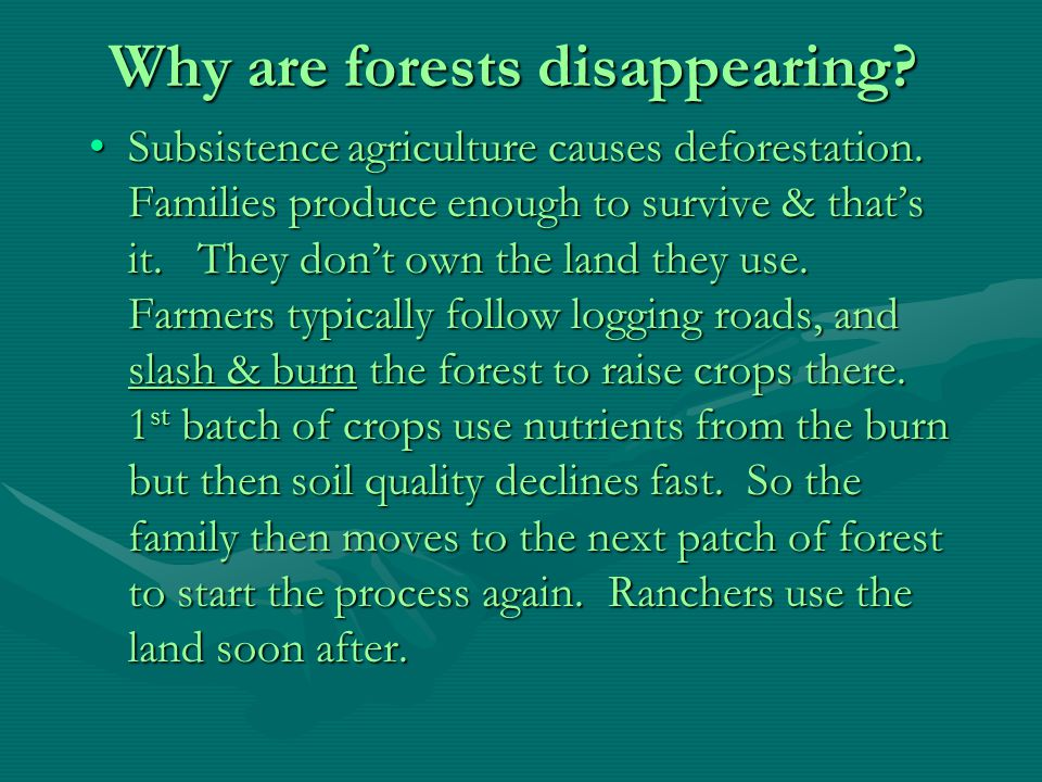 Why are forests disappearing.