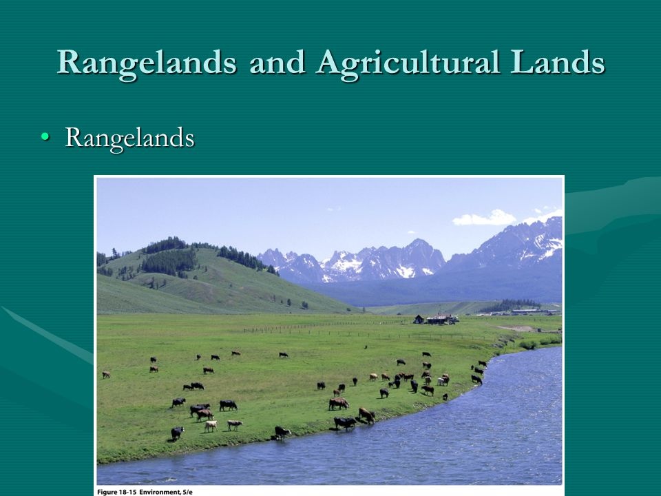 Rangelands and Agricultural Lands Agricultural LandsAgricultural Lands US has 300 million acres of prime farmlandUS has 300 million acres of prime farmland Main problem: suburban spread onto agricultural landMain problem: suburban spread onto agricultural land