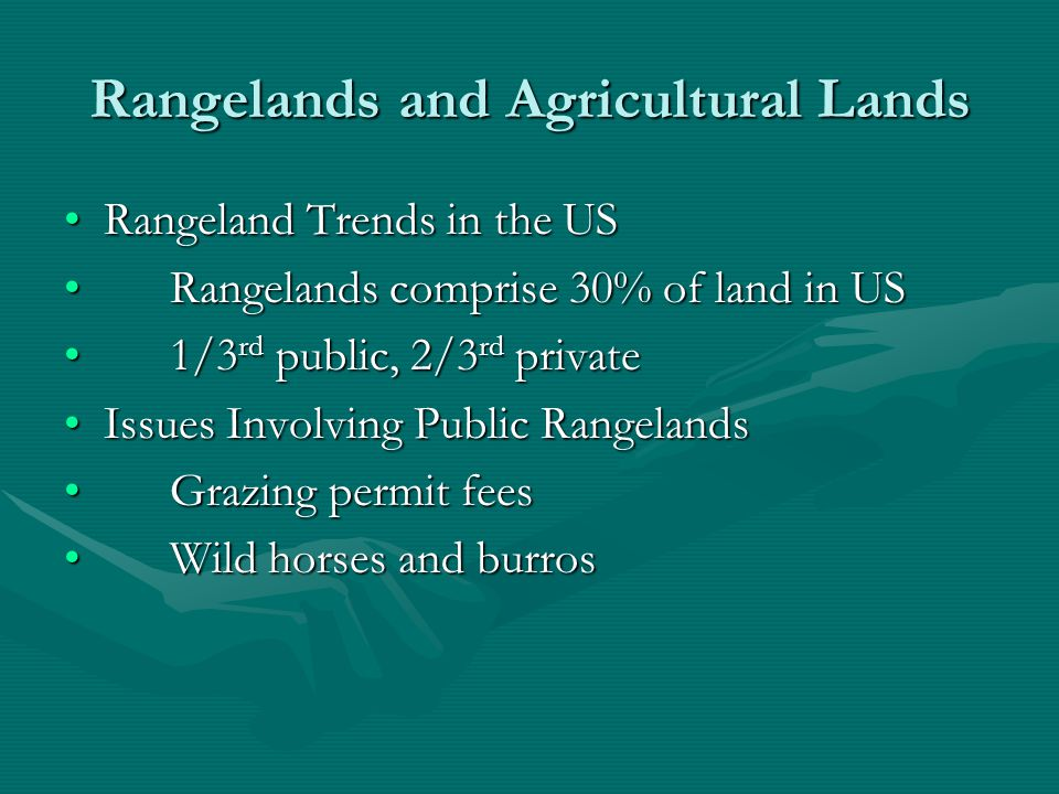 Rangelands The federal government issues permits that allow private livestock operators to use public rangelands for grazing.The federal government issues permits that allow private livestock operators to use public rangelands for grazing.