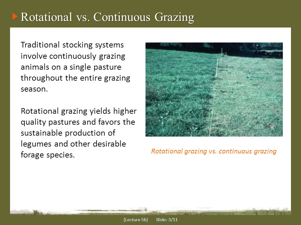 {Lecture 5b} Slide: 3/11 Traditional stocking systems involve continuously grazing animals on a single pasture throughout the entire grazing season.