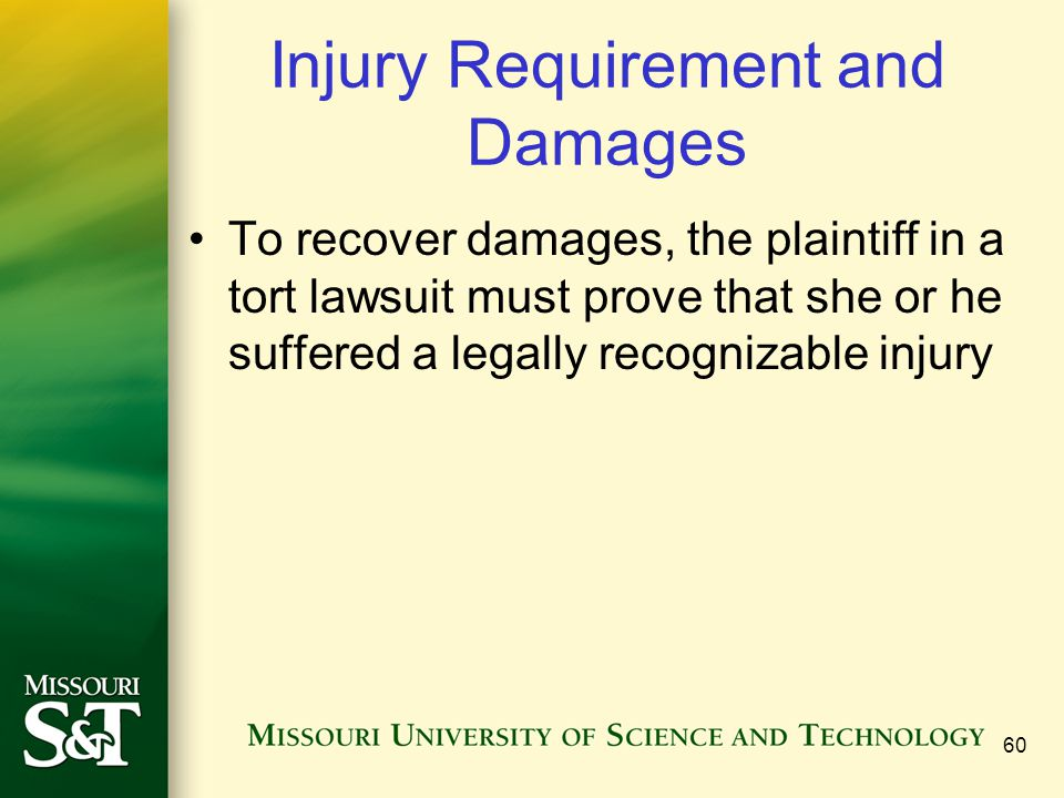 60 Injury Requirement and Damages To recover damages, the plaintiff in a tort lawsuit must prove that she or he suffered a legally recognizable injury