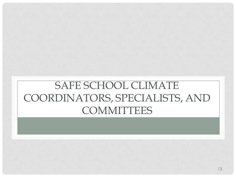 SAFE SCHOOL CLIMATE COORDINATORS, SPECIALISTS, AND COMMITTEES 13