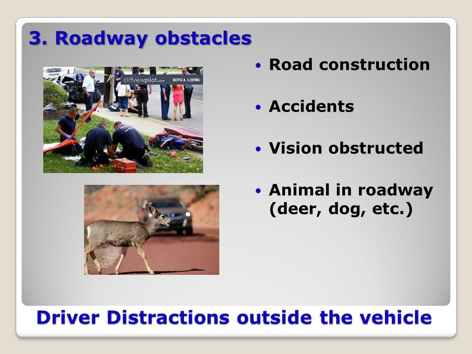 Driver Distractions outside the vehicle Road construction Accidents Vision obstructed Animal in roadway (deer, dog, etc.) 3.