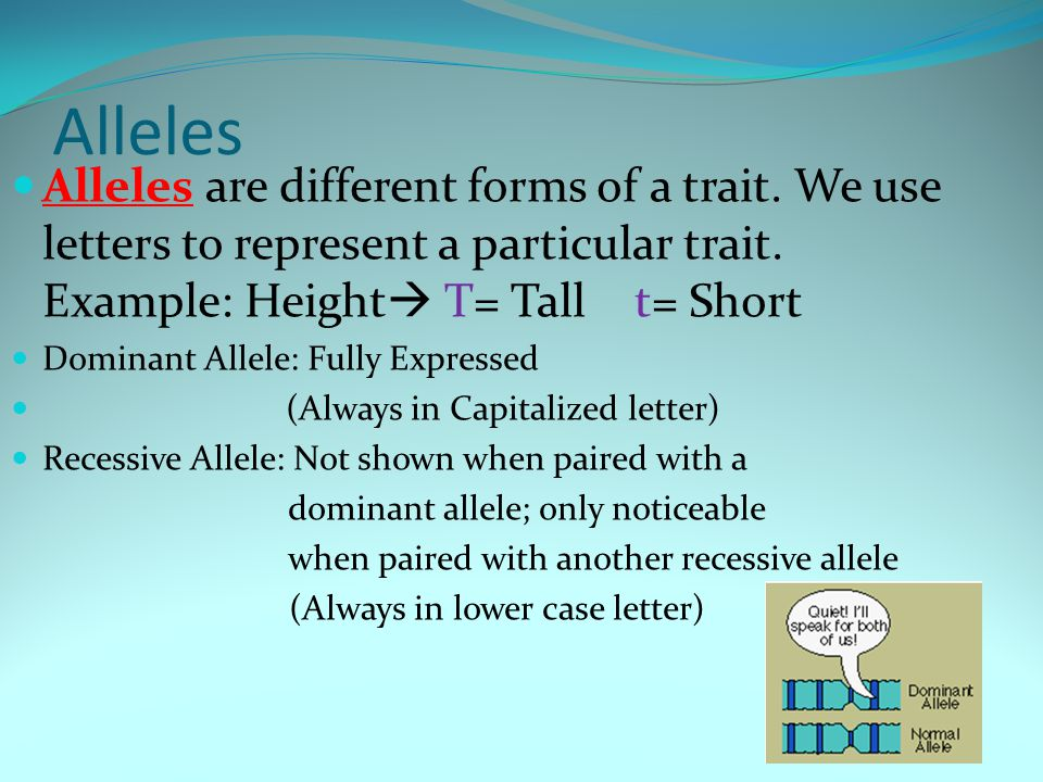 Alleles Alleles are different forms of a trait. We use letters to represent a particular trait.