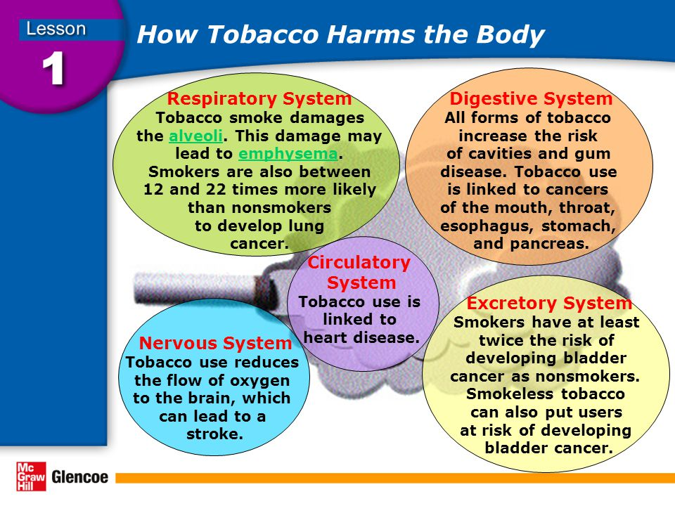 How Tobacco Harms the Body Respiratory System Tobacco smoke damages the alveoli.