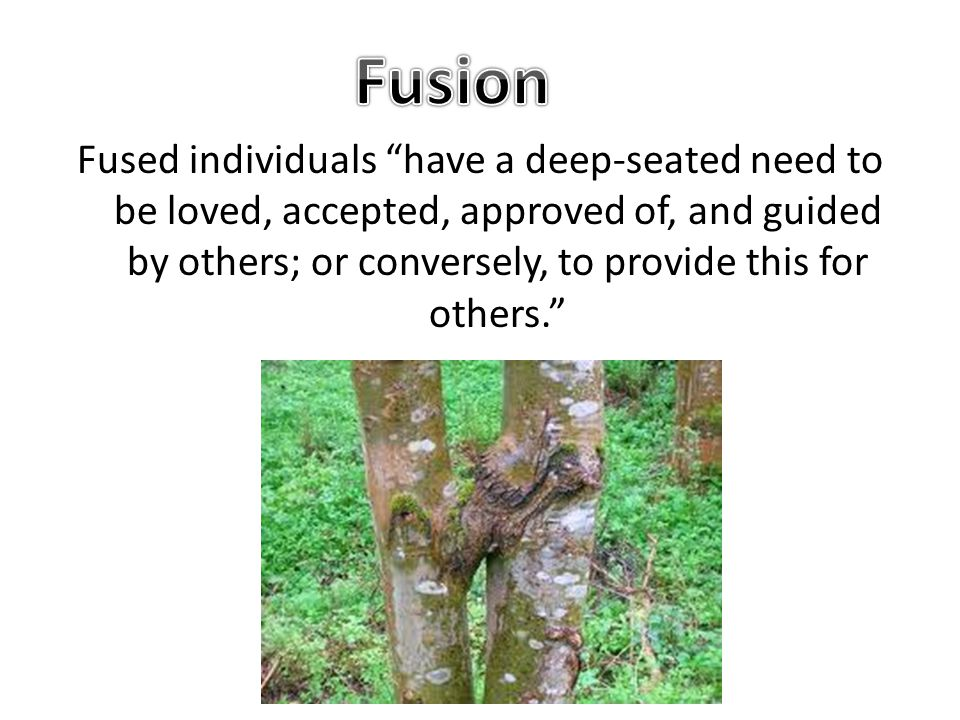 Fused individuals have a deep-seated need to be loved, accepted, approved of, and guided by others; or conversely, to provide this for others.