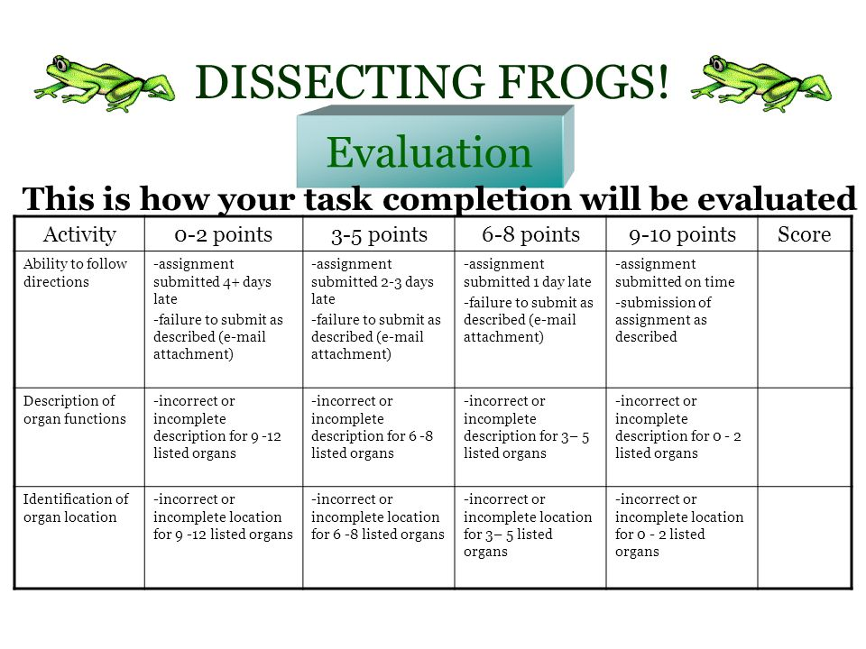 DISSECTING FROGS A WebQuest for Grade 8 Biology ppt download – Virtual Frog Dissection Worksheet