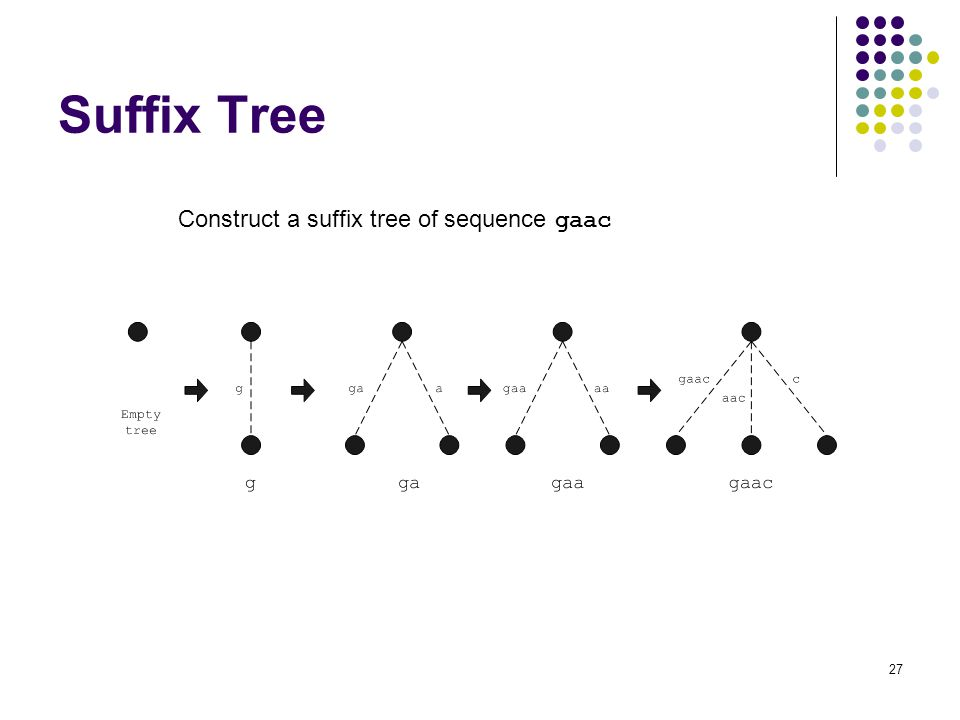 27 Suffix Tree Construct a suffix tree of sequence gaac