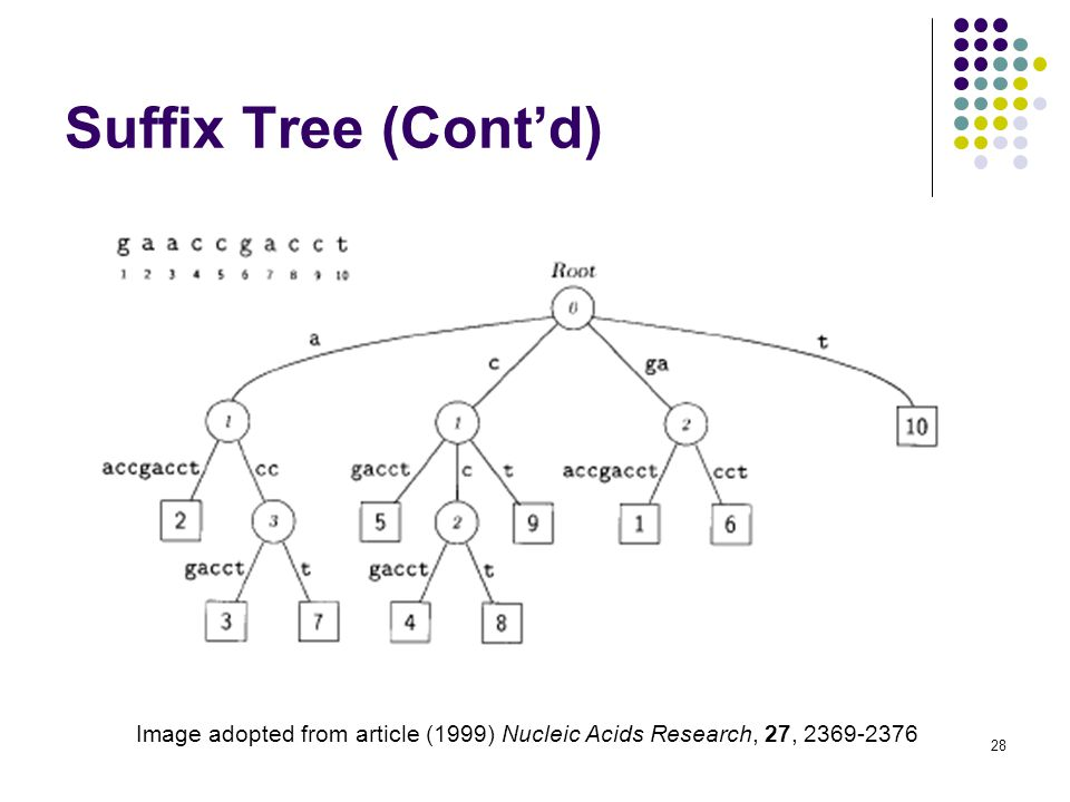 28 Suffix Tree (Cont'd) Image adopted from article (1999) Nucleic Acids Research, 27,