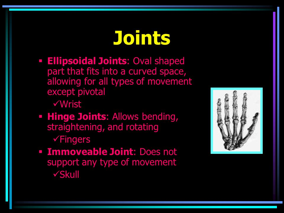 Joints  Ellipsoidal Joints: Oval shaped part that fits into a curved space, allowing for all types of movement except pivotal Wrist  Hinge Joints: Allows bending, straightening, and rotating Fingers  Immoveable Joint: Does not support any type of movement Skull