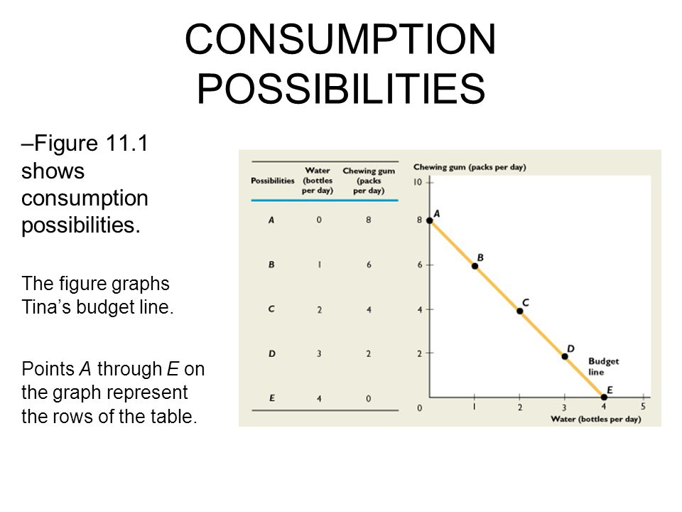 CONSUMPTION POSSIBILITIES –Figure 11.1 shows consumption possibilities.