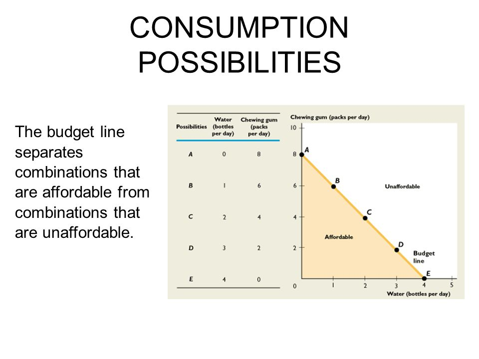 CONSUMPTION POSSIBILITIES The budget line separates combinations that are affordable from combinations that are unaffordable.