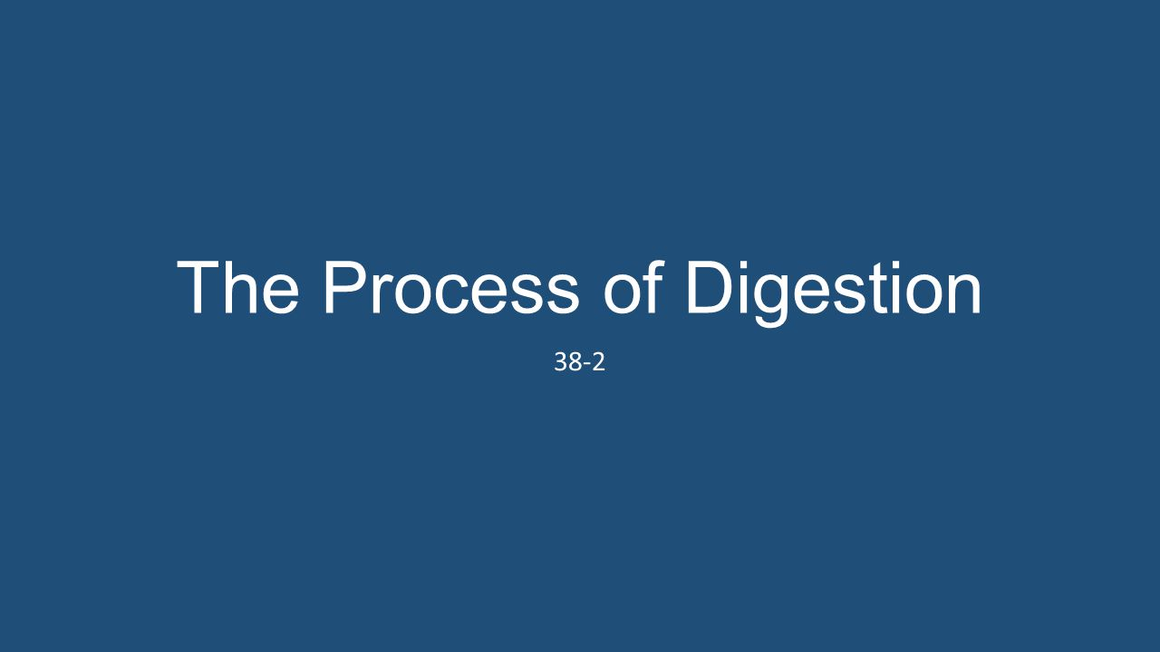 The Process of Digestion 38-2