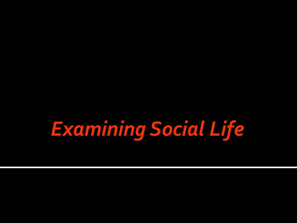Examining Social Life