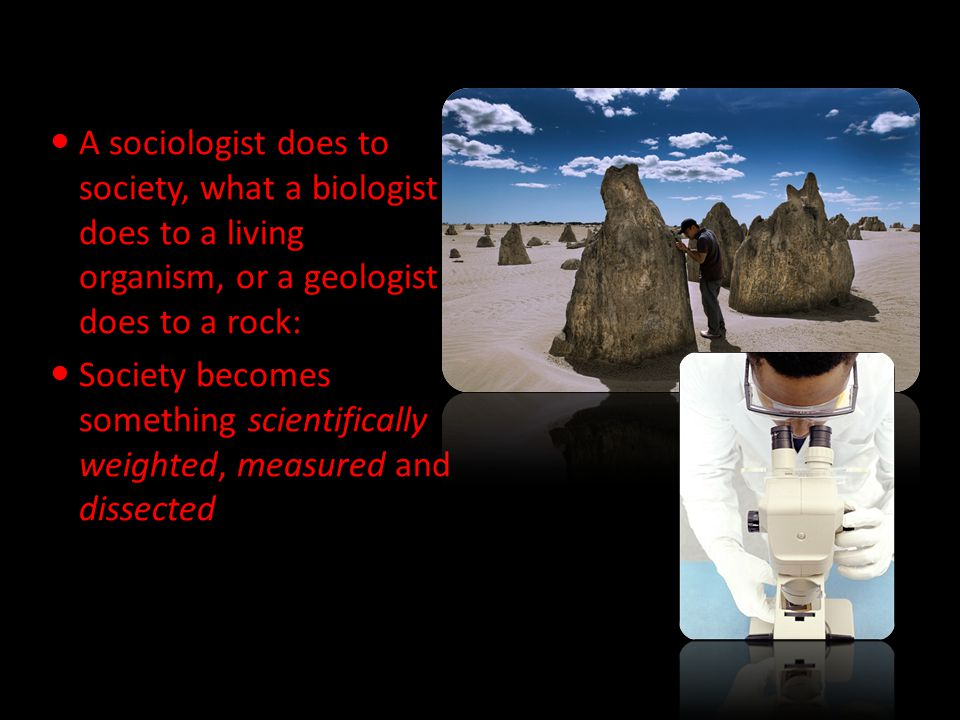 A sociologist does to society, what a biologist does to a living organism, or a geologist does to a rock: Society becomes something scientifically weighted, measured and dissected