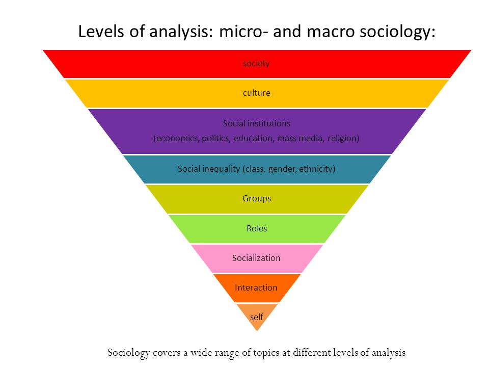 Levels of analysis: micro- and macro sociology: society culture Social institutions (economics, politics, education, mass media, religion) Social inequality (class, gender, ethnicity) Groups Roles Socialization Interaction self Sociology covers a wide range of topics at different levels of analysis