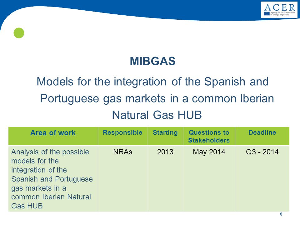8 MIBGAS Models for the integration of the Spanish and Portuguese gas markets in a common Iberian Natural Gas HUB Area of work ResponsibleStartingQuestions to Stakeholders Deadline Analysis of the possible models for the integration of the Spanish and Portuguese gas markets in a common Iberian Natural Gas HUB NRAs2013May 2014Q