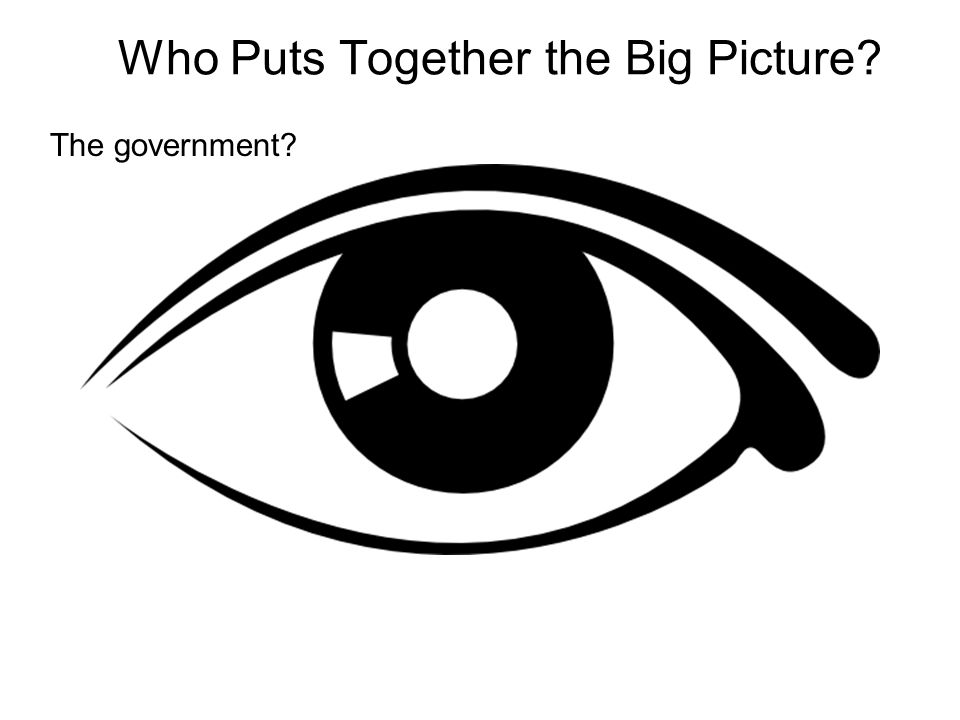 Who Puts Together the Big Picture The government