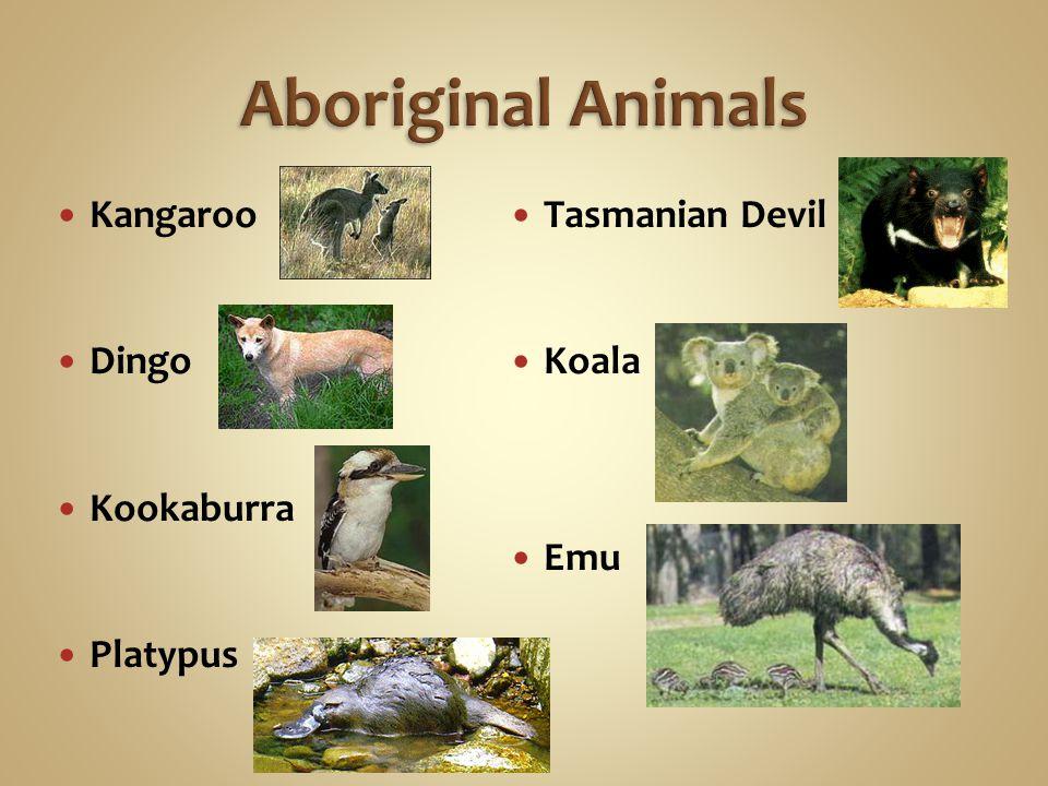 Aboriginal Animals Kangaroo Dingo Kookaburra Platypus Tasmanian Devil Koala Emu