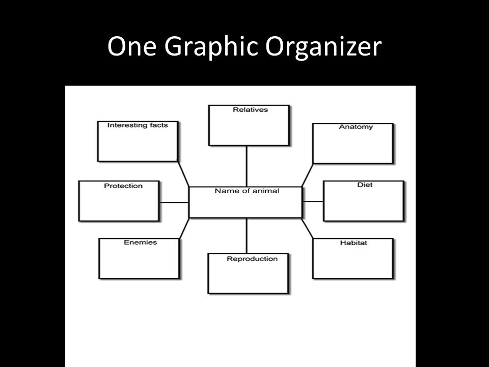 One Graphic Organizer