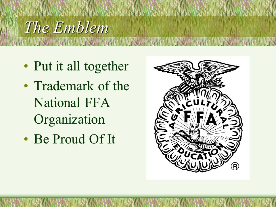 The Words FFA is an important part of the Agriculture Education Program