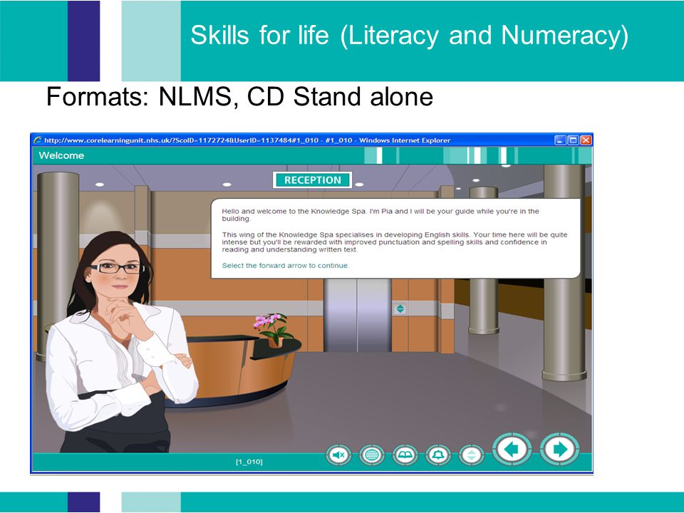 Skills for life (Literacy and Numeracy) Formats: NLMS, CD Stand alone