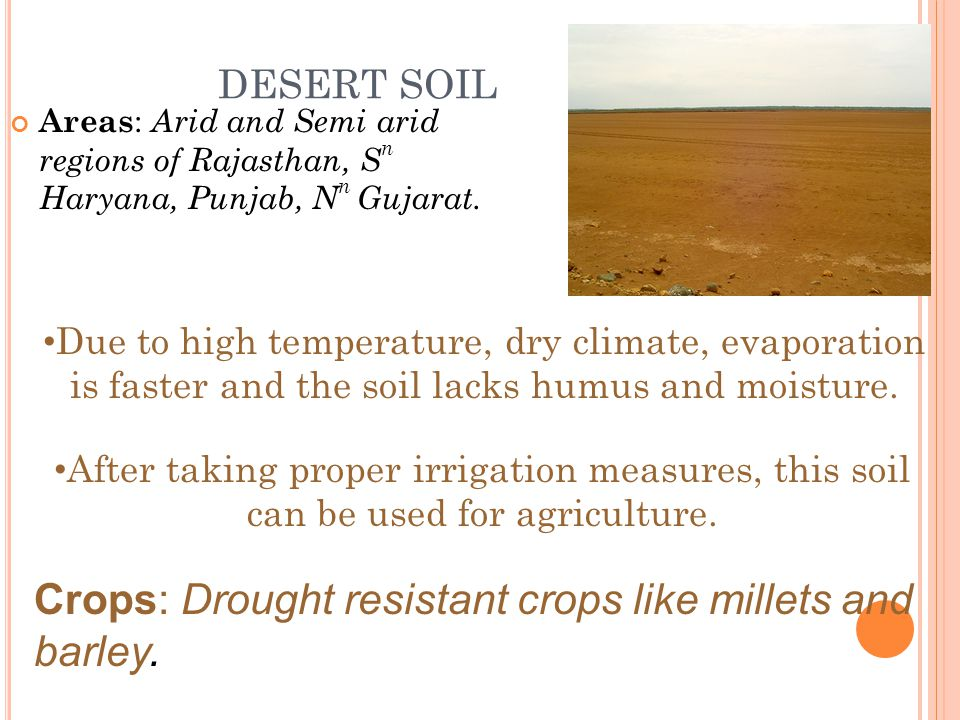 DESERT SOIL Areas : Arid and Semi arid regions of Rajasthan, S n Haryana, Punjab, N n Gujarat.
