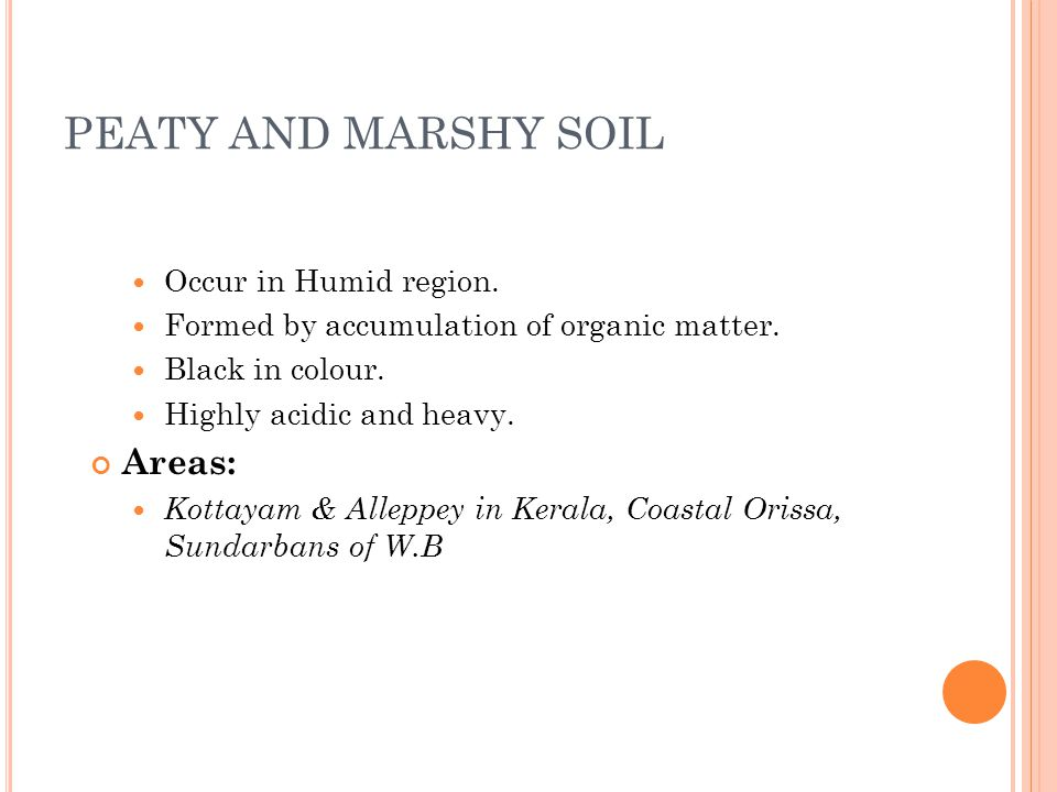 PEATY AND MARSHY SOIL Occur in Humid region. Formed by accumulation of organic matter.