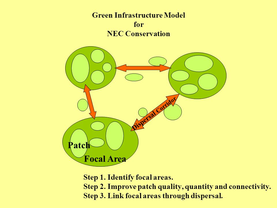 Green Infrastructure Model for NEC Conservation Focal Area Patch Dispersal Corridor Step 1.