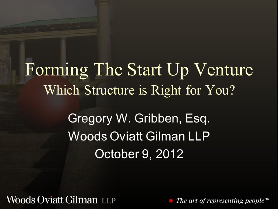 Forming The Start Up Venture Which Structure is Right for You.