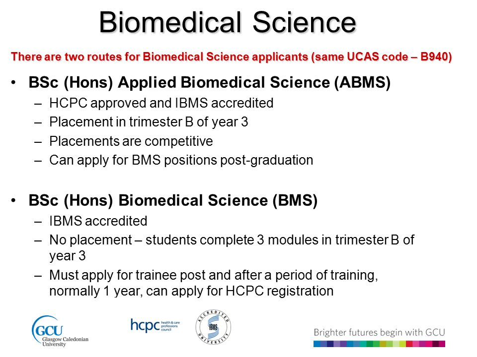biomedical science personal statement The study of biomedical sciences brings together two of my abiding passions: biological systems and being able to offer others meaningful, practical support and care.