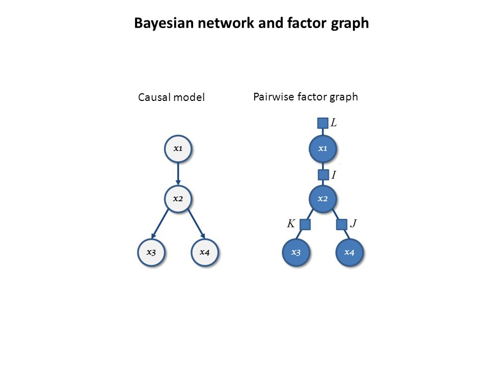 Causal model Pairwise factor graph Bayesian network and factor graph