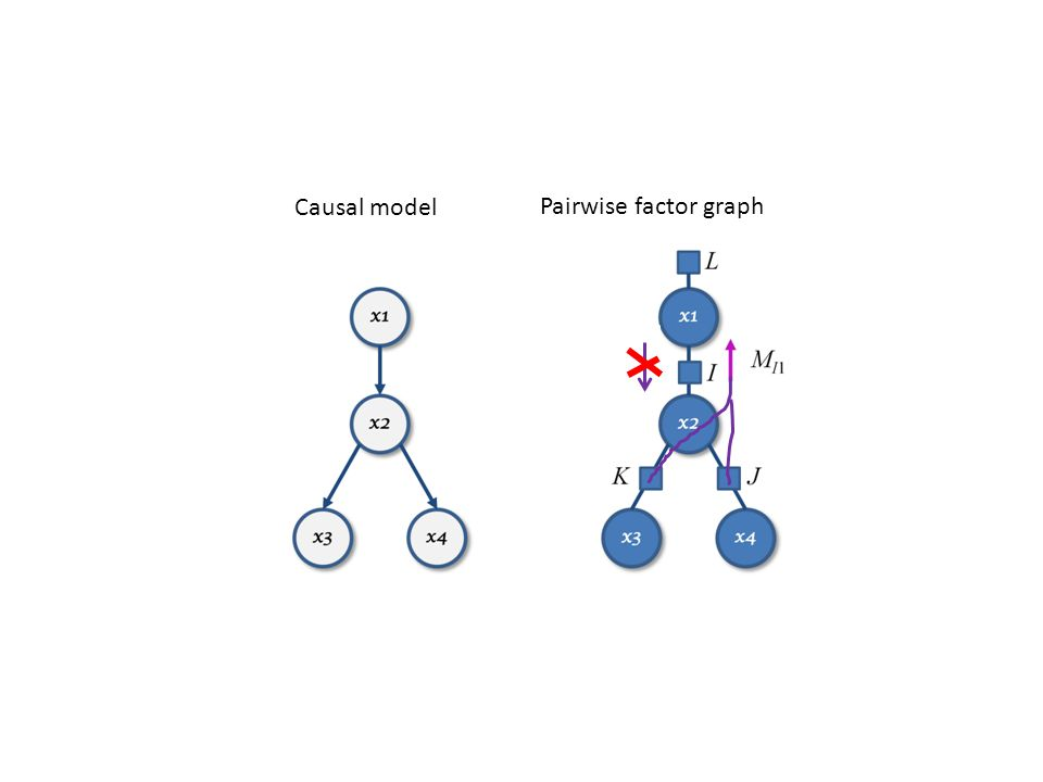 Causal model Pairwise factor graph