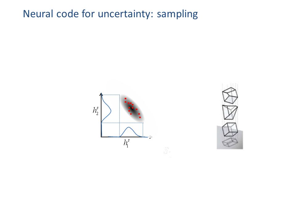 Neural code for uncertainty: sampling
