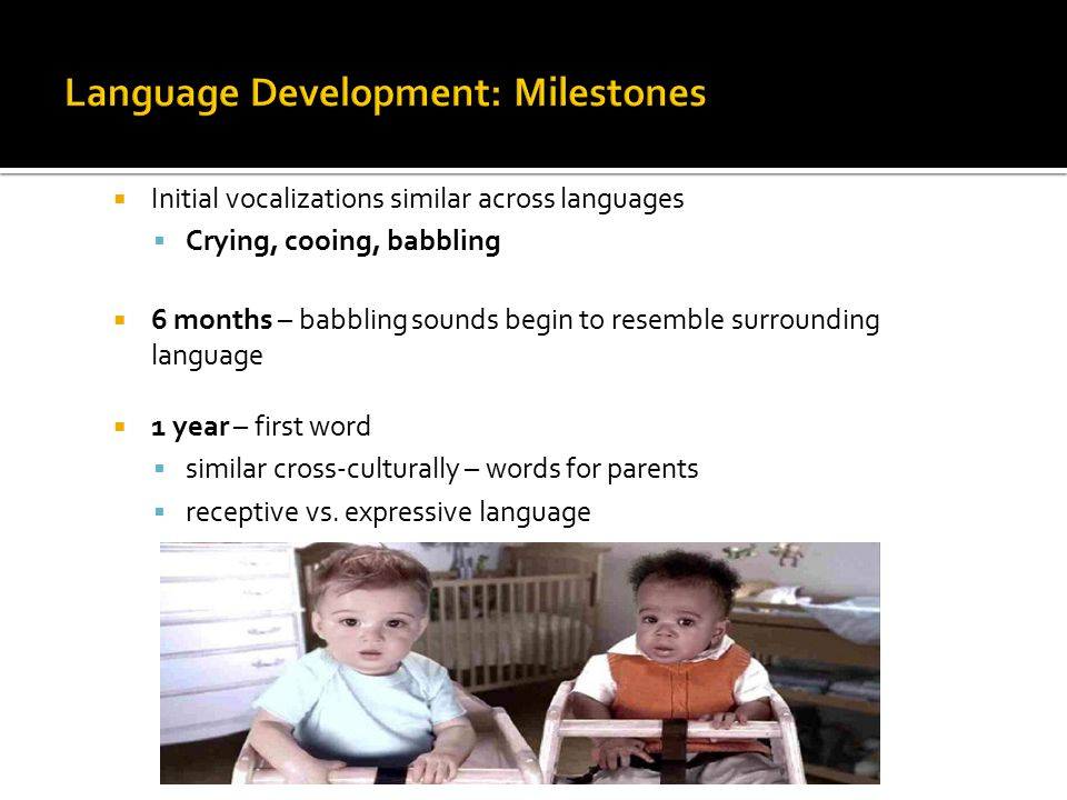  Initial vocalizations similar across languages  Crying, cooing, babbling  6 months – babbling sounds begin to resemble surrounding language  1 year – first word  similar cross-culturally – words for parents  receptive vs.