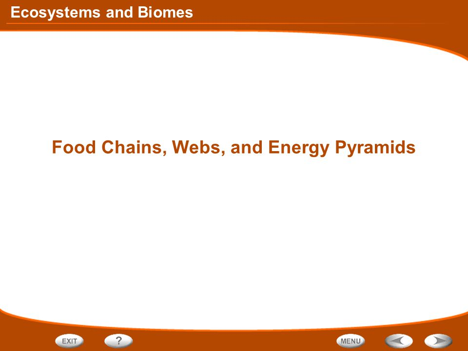 Ecosystems and Biomes Food Chains, Webs, and Energy Pyramids