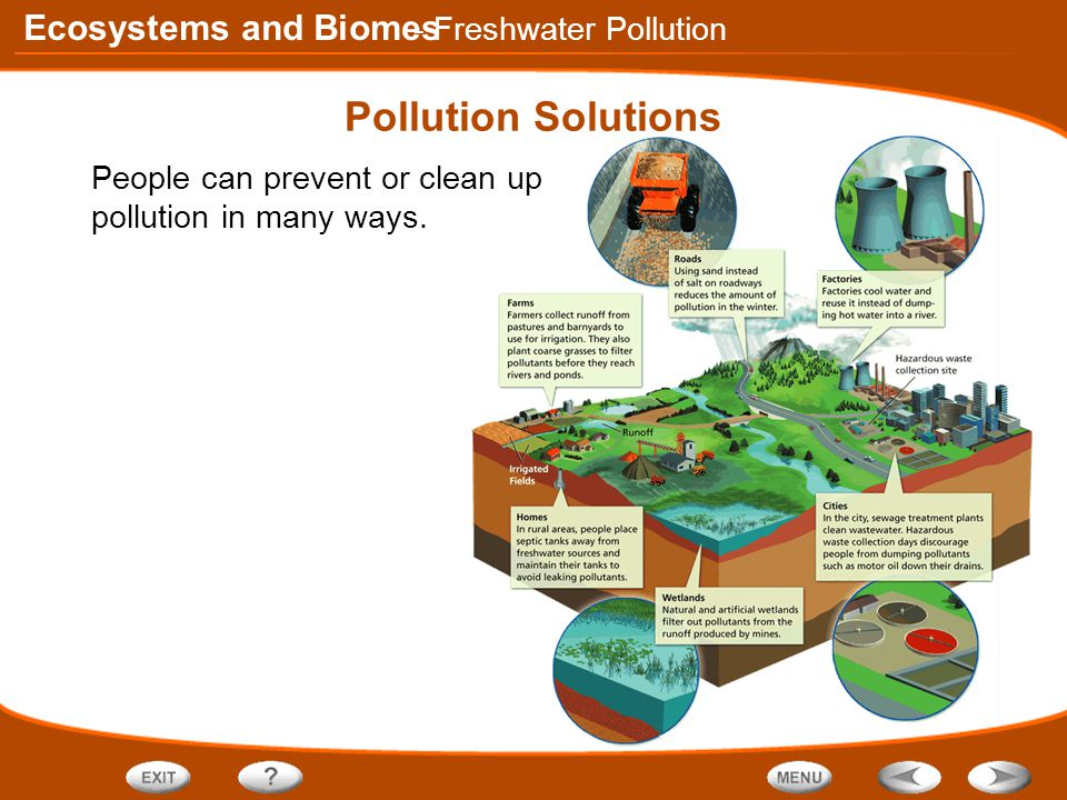 Ecosystems and Biomes Pollution Solutions People can prevent or clean up pollution in many ways.
