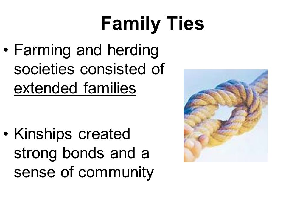 Kinship Includes relationships through blood and through marriage.