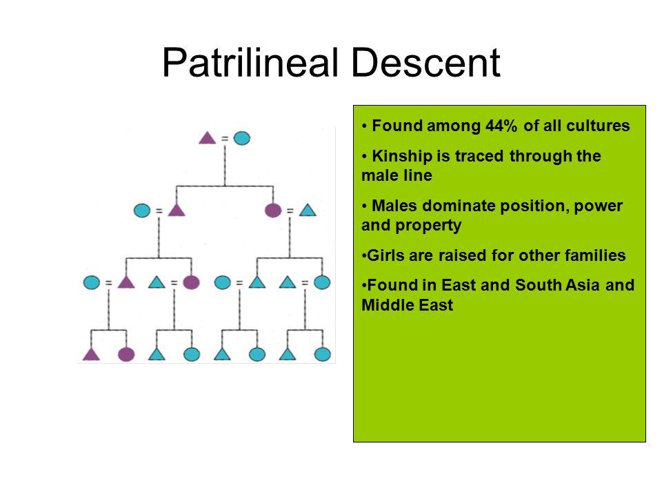 Patrilineage Descent is traced through male lineage.