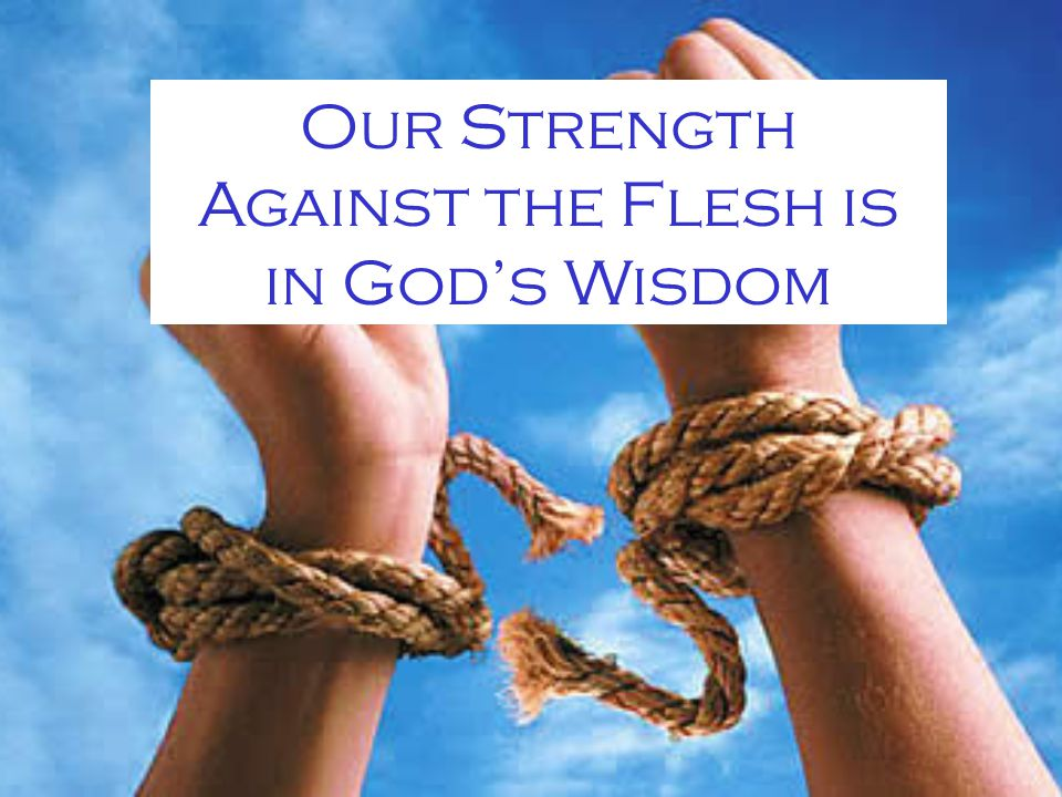 Our Strength Against the Flesh is in God's Wisdom