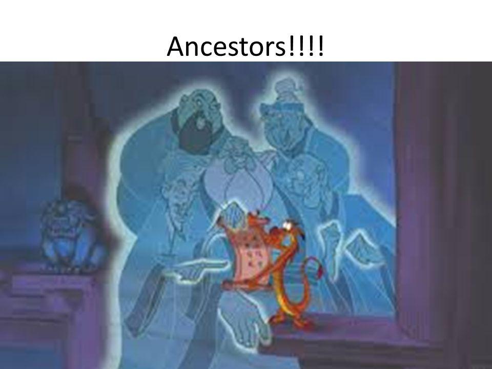 Ancestors!!!!
