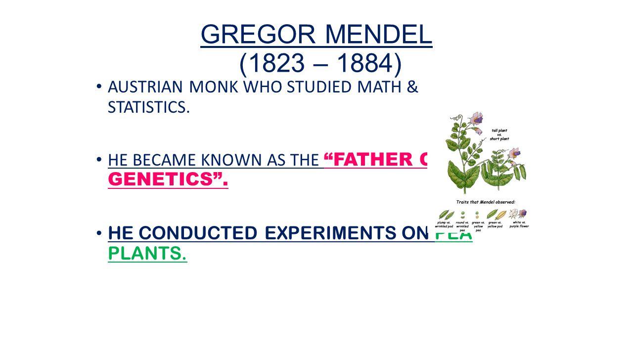 WednesdayThursday 17182015 Agenda Welcome Back Notes – Gregor Mendel Worksheet