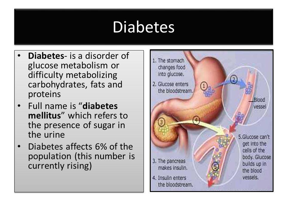 Attractive Diabetes Mellitus Anatomy And Physiology Ideas - Anatomy ...