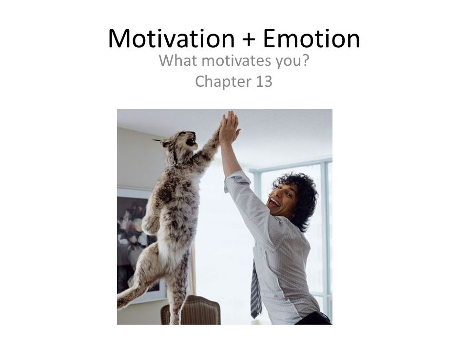 Motivation + Emotion What motivates you Chapter 13