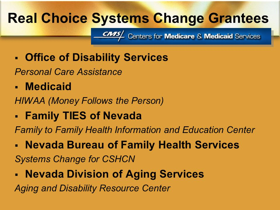 Real Choice Systems Change Grantees  Office of Disability Services Personal Care Assistance  Medicaid HIWAA (Money Follows the Person)  Family TIES of Nevada Family to Family Health Information and Education Center  Nevada Bureau of Family Health Services Systems Change for CSHCN  Nevada Division of Aging Services Aging and Disability Resource Center