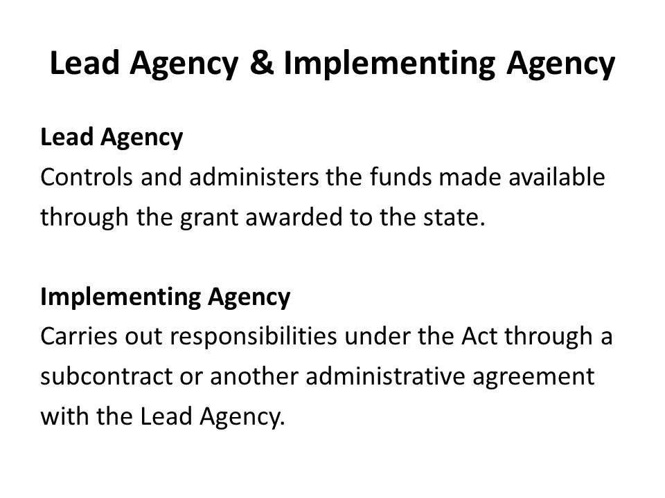 Lead Agency & Implementing Agency Lead Agency Controls and administers the funds made available through the grant awarded to the state.