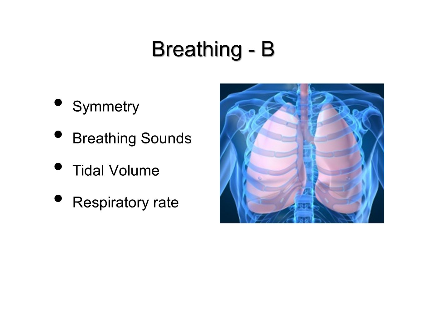Symmetry Breathing Sounds Tidal Volume Respiratory rate Breathing - B