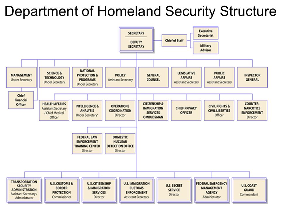 essay on the department of homeland