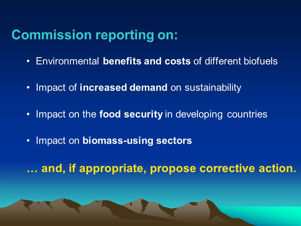 Commission reporting on: Environmental benefits and costs of different biofuels Impact of increased demand on sustainability Impact on the food security in developing countries Impact on biomass-using sectors … and, if appropriate, propose corrective action.