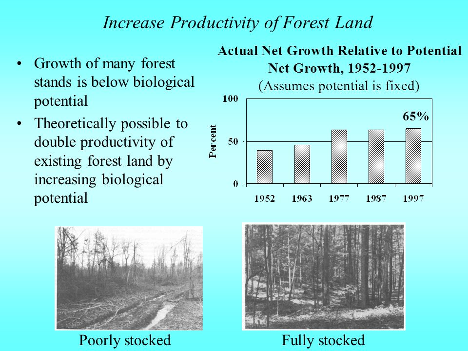 Increase Productivity of Forest Land Growth of many forest stands is below biological potential Theoretically possible to double productivity of existing forest land by increasing biological potential Actual Net Growth Relative to Potential Net Growth, Fully stockedPoorly stocked 65% (Assumes potential is fixed)